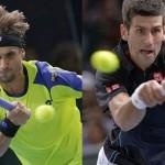 Djokovic vence a Ferrer en la final del masters de París